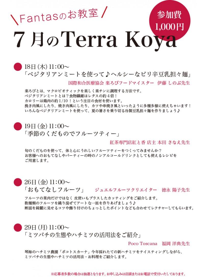 201907Terra koya