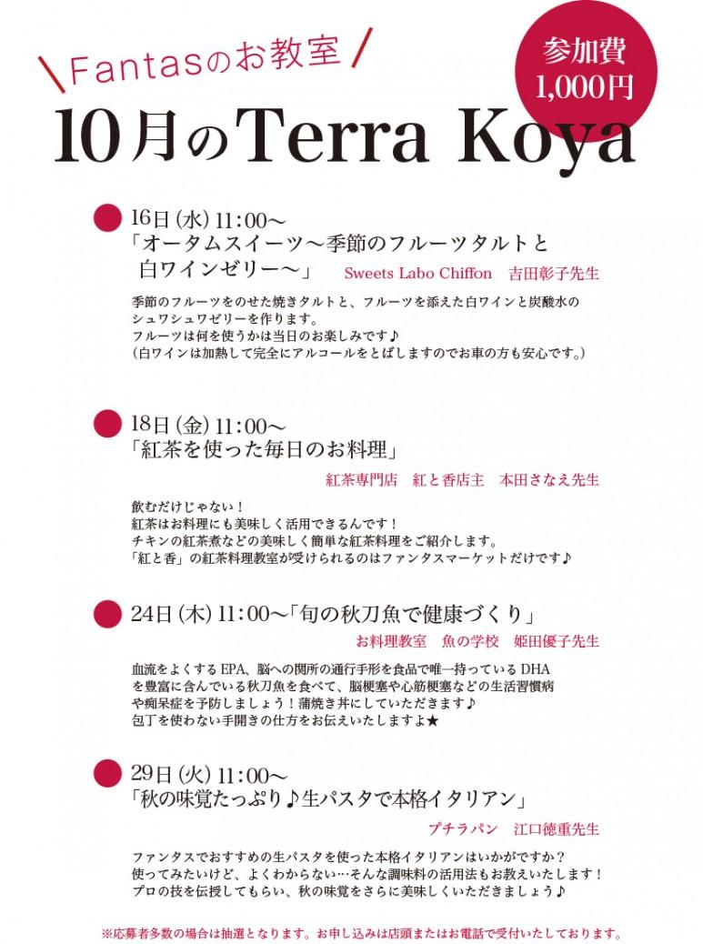 201910Terra koya