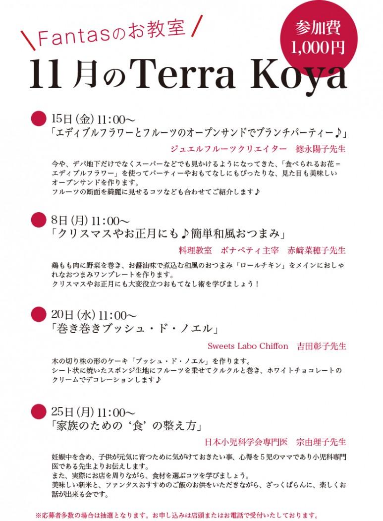 201911Terra koya