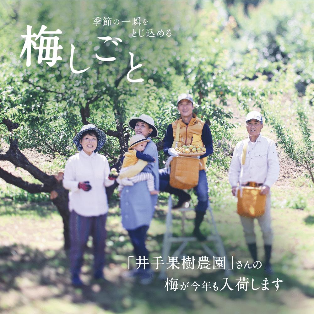 井手果樹農園