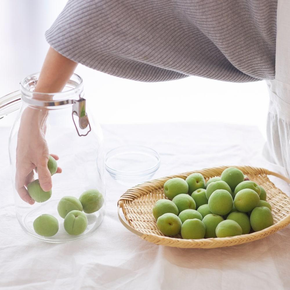 梅と砂糖を交互に入れていきます まずは梅を入れます