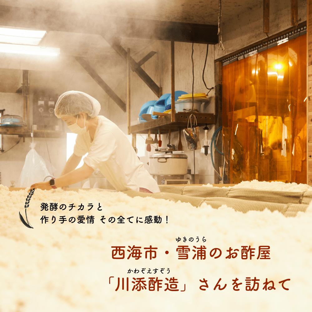 発酵のチカラと 作り手の愛情 その全てに感動! 西海市・雪浦のお酢屋 「川添酢造」さんを訪ねて