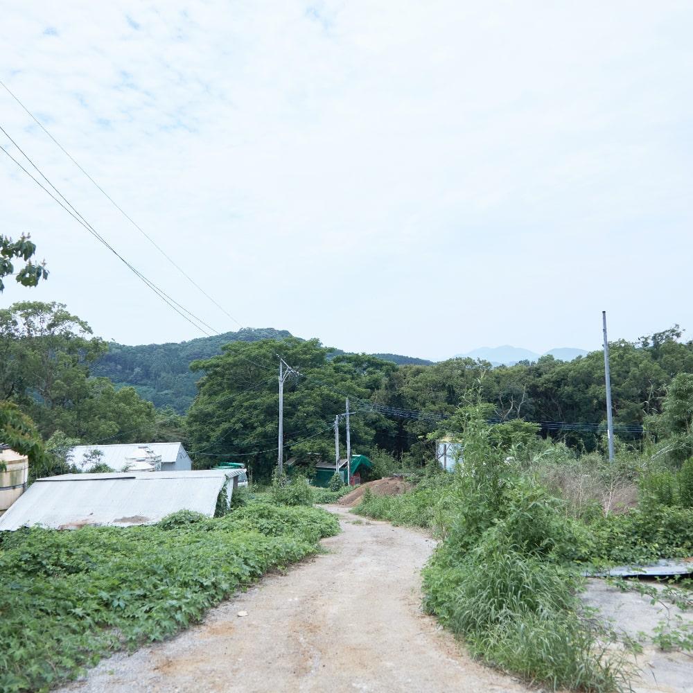緑深き小道を上った場所「土井農場の豚舎」