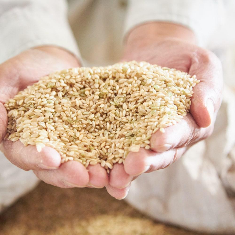 「にこまる」の玄米